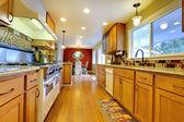 Zařízený pokoj jasná světle hnědé kuchyně