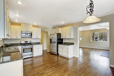 House interior. Kitchen room