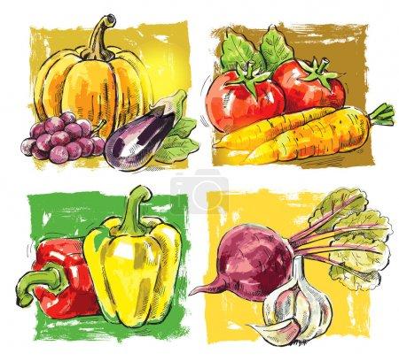 Illustration pour Image vectorielle dessinée à la main de la ferme fraîche - image libre de droit