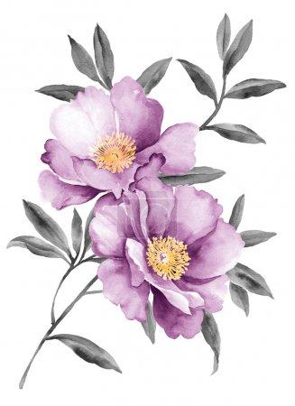 Foto de Flores ilustración acuarela en Fondo simple - Imagen libre de derechos