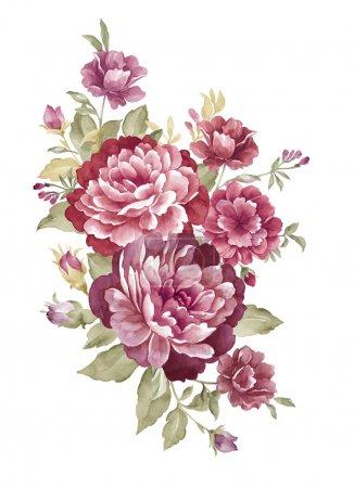 Watercolor illustration 00404