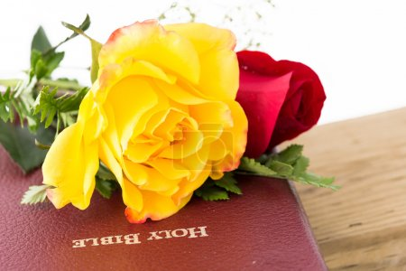 Roses,Wood and the Word of God