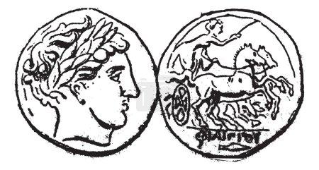 Ancient Macedonian Gold Coin, vintage engraving