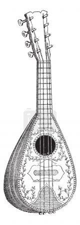 Mandolin, vintage engraving