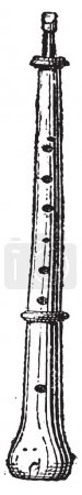 Piccolo Oboe or Piccoloboe, vintage engraving