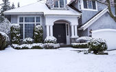 Snow on house and Yard