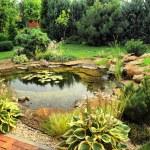 Landscape design...