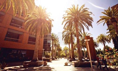 Google headquarters, Palo Alto