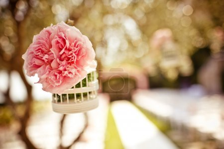 Photo for Wedding floral decorative bird cage with pink rose on the tree - Royalty Free Image