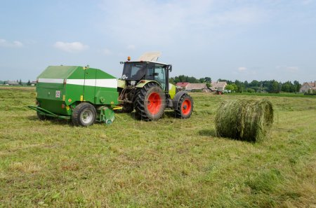 Tractor bailer collect hay in field. Agricultural ...