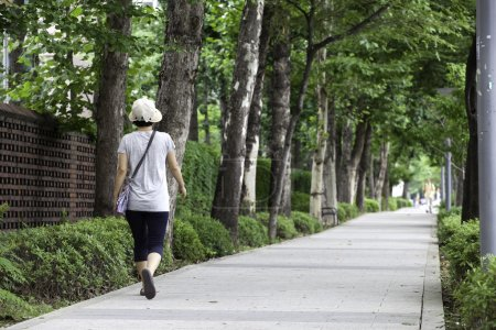 A woman walks along a sidewalk lined with trees in...
