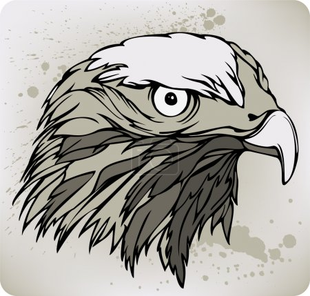 Buzzard hawk, hand drawing. Vector illustration.