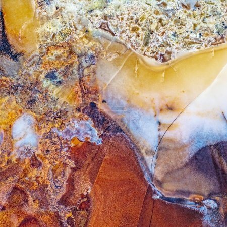 Moss Agate abstract close-up