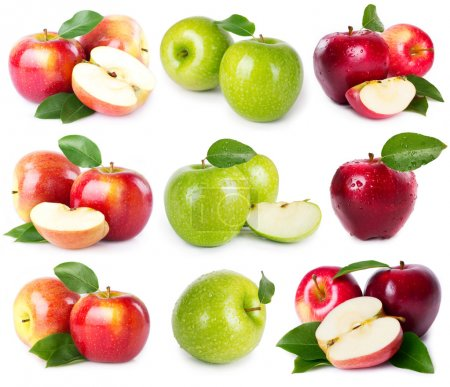 Photo for Collection of fresh apples isolated on white - Royalty Free Image