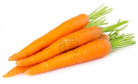 Photo for Fresh carrots isolated on white background - Royalty Free Image