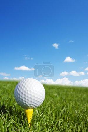 Golf ball vertical