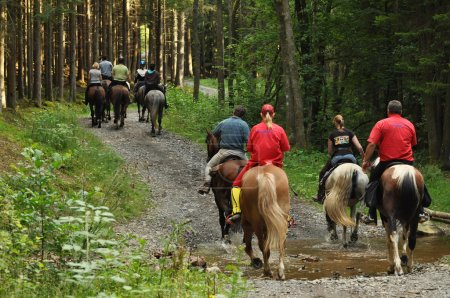 Photo for A group on a horse ride in an forest in the Belgian Ardennes - Royalty Free Image