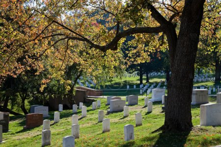 WASHINGTON DC - OCT 16: Rows and columns of US soldier's tombsto
