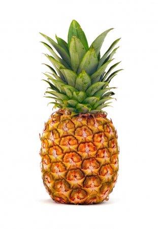Photo pour Ananas isolé sur fond blanc - image libre de droit