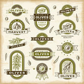 A set of vintage olive labels and badges in woodcut style EPS10 vector illustration