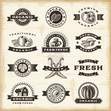 Foto de Un conjunto de sellos cosecha orgánica completamente vintage estilo xilografía. Ilustración de vector Eps10 - Imagen libre de derechos