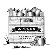 Retro wooden crate of apples in woodcut style Black and white editable vector illustration with clipping mask