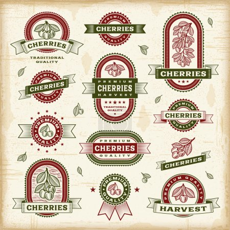 Illustration for A set of vintage cherry labels and badges in woodcut style. Fully editable EPS10 vector illustration. - Royalty Free Image