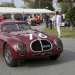 Постер, плакат: Melbourne Formula One Alfa Milano and other antique racers in 2010