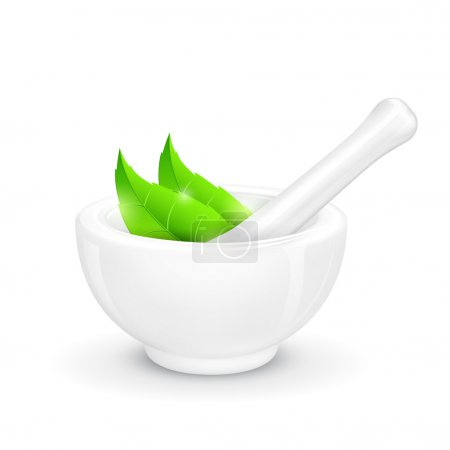 Illustration for Illustration of mortar and pestle with herbal leaf - Royalty Free Image