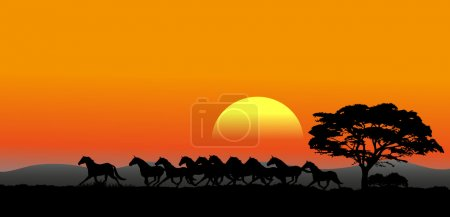 Illustration for The pictures show a running herd at sunset - Royalty Free Image