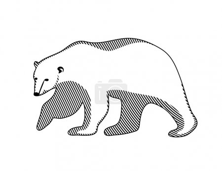 Illustration for Polar bear on a white background - Royalty Free Image