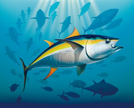 Shoal of yellowfin tuna in deep water. Realistic v...