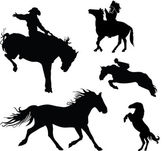 Horse collection - vector silhouette