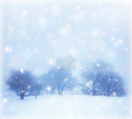 Photo pour Photo de beau paysage enneigé, carte postale de Noël, couverture de neige sur les arbres, chutes de neige saisonnières, tempête de neige par temps froid d'hiver, temps givré, givre sur les branches de bois, panorama hivernal - image libre de droit