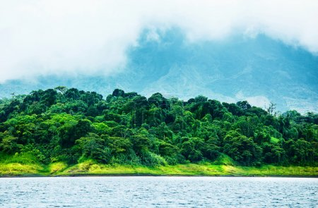 Photo for Image of Costa Rica, nature of Central America, fog in the mountains, green forest near river, beautiful landscape, eco tourism, panoramic scene, peaceful nature, travel and vacation concept - Royalty Free Image