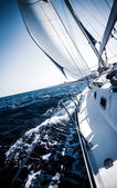 Sailboat in action