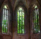 Kirchenfenster in maroden Kirche überwuchert