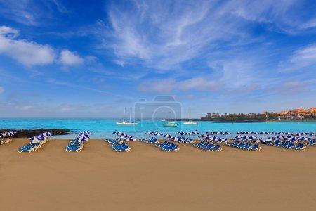 Beach Las vistas in Adeje Arona at Tenerife south