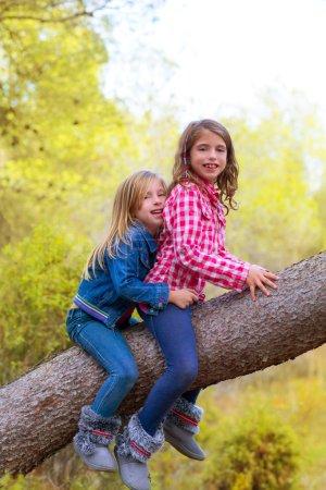 Children friends girls climbing to a pine tree trunk