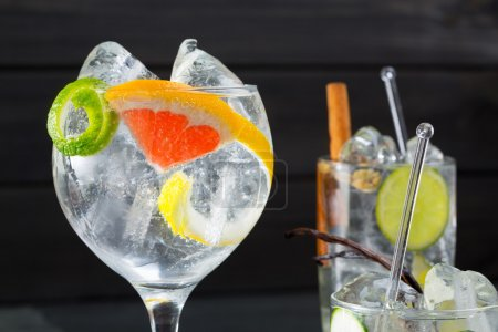 Photo for Gin tonic varied cocktails with lima lemon and grapefruit vanilla and cinnamon spices - Royalty Free Image