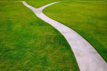 Photo pour Herbe jardin pelouse avec une métaphore de détour deux option façons de choisir de quelle façon - image libre de droit
