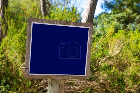 Blue track balnk sign in Mediterranean pine forest