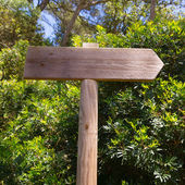 Wooden track road sign in Mediterranean