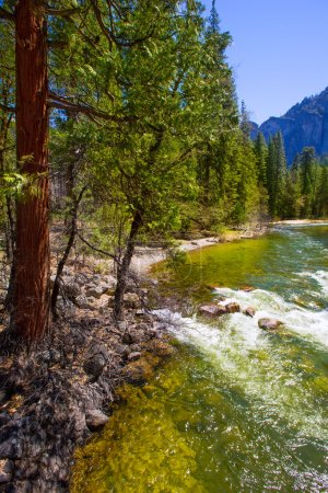 Yosemite National Park Merced River in California
