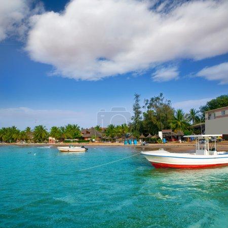 Africa Saly Senegal hot spot of sailfish fishing