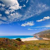 California beach in Big Sur in Monterey Pacific Highway 1
