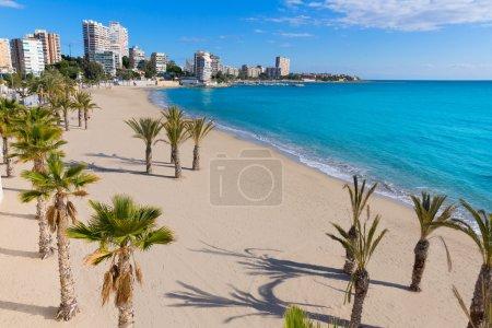 Alicante San Juan beach of La Albufereta with palm...