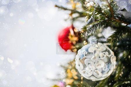 Photo pour Boules de Noël couleurs rouges et blanches sur l'arbre - image libre de droit