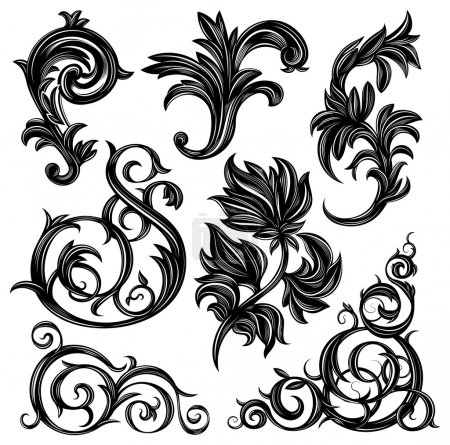 Illustration for Set of floral design elements isolated on white - Royalty Free Image