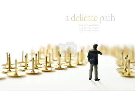 Delicate path